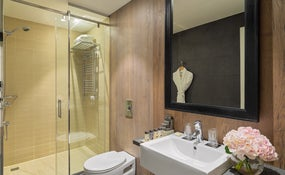 Deluxe Room's bathroom