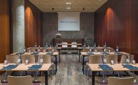 Xarel·lo meeting room