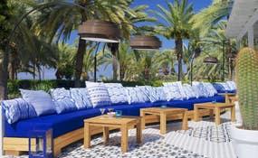 Terraza del Cactus Bar (¡nueva!)